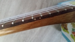 mickey mouse fret dots